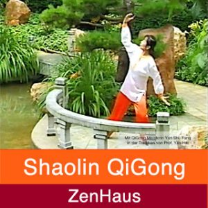 Video Shaolin QiGong